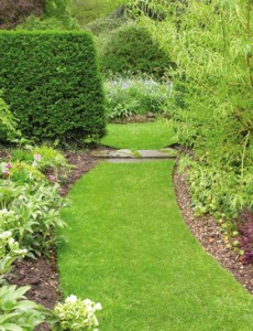 Gardening services in melbourne by pro cleaners melbourne for Gardening tools melbourne